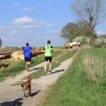 Vidéos Jogging 2013 084