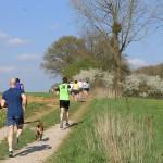 Vidéos Jogging 2013 085