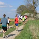 Vidéos Jogging 2013 100