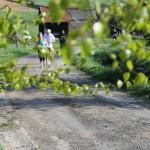 Vidéos Jogging 2013 229